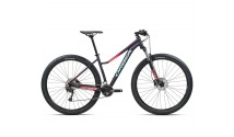 Велосипед Orbea 29 MX40 ENT 21 Purple - Pink
